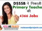 DSSSB Primary Teacher job